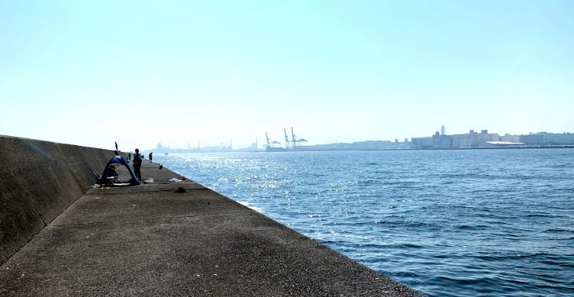 川崎新堤防の渡船・釣れる魚は?【釣り好きのオアシス】