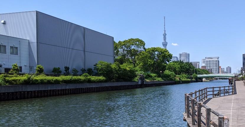 横十間川のハゼ釣りポイントを紹介!駅近・お手軽な高実績ポイント♪