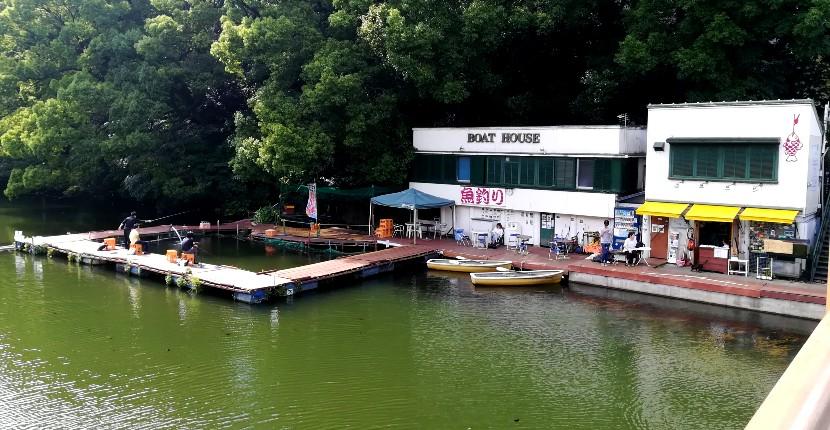 都内でお気軽ボート釣り 弁慶堀でバス・ニジマス、コイ【赤坂見付】