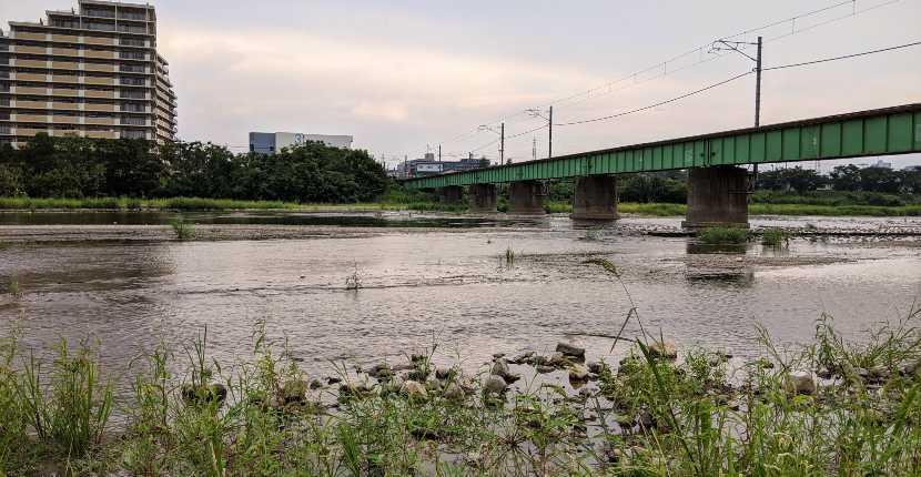 東京『浅川』でルアー小物釣り ポイントもかる~く紹介