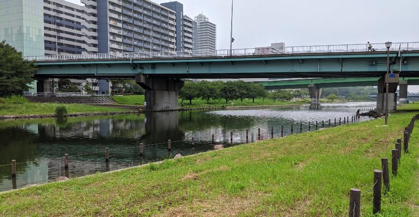 東京『旧中川』でハゼ釣り サイトフィッシングがオススメ