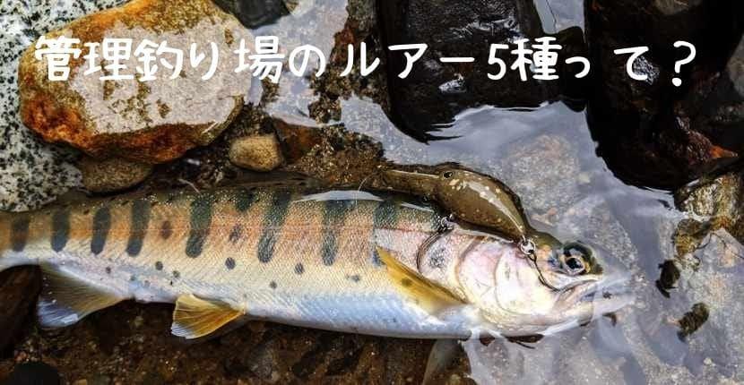 管理釣り場トラウトに使うルアーの種類:初心者にオススメなのはどれ?